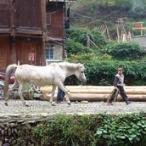 "Guizhou • <a style=""font-size:0.8em;"" href=""http://www.flickr.com/photos/71907000@N08/15968103049/"" target=""_blank"">View on Flickr</a>"