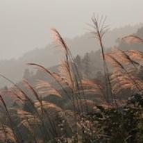 "Guizhou • <a style=""font-size:0.8em;"" href=""http://www.flickr.com/photos/71907000@N08/15527541604/"" target=""_blank"">View on Flickr</a>"