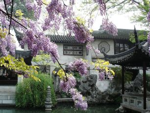 Trädgård i Suzhou