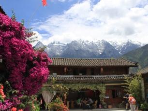 Det blommar i Tigersprångsklyftan, Yunnan